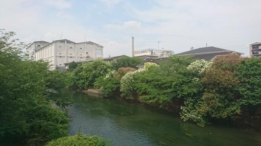 月桂冠昭和蔵工場遠景