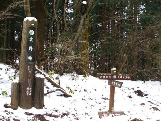 大野峠 (埼玉県比企郡ときがわ町大野)